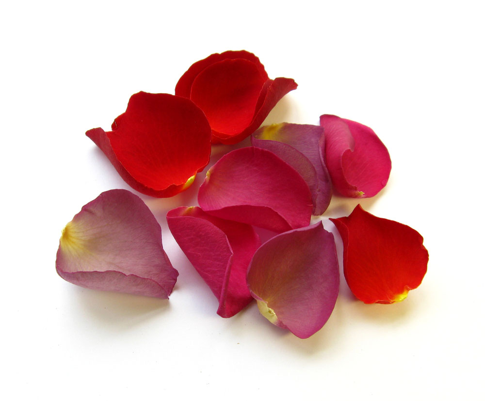 Petal Confetti - Red, Mauve and Cerise Large Natural Rose Petals
