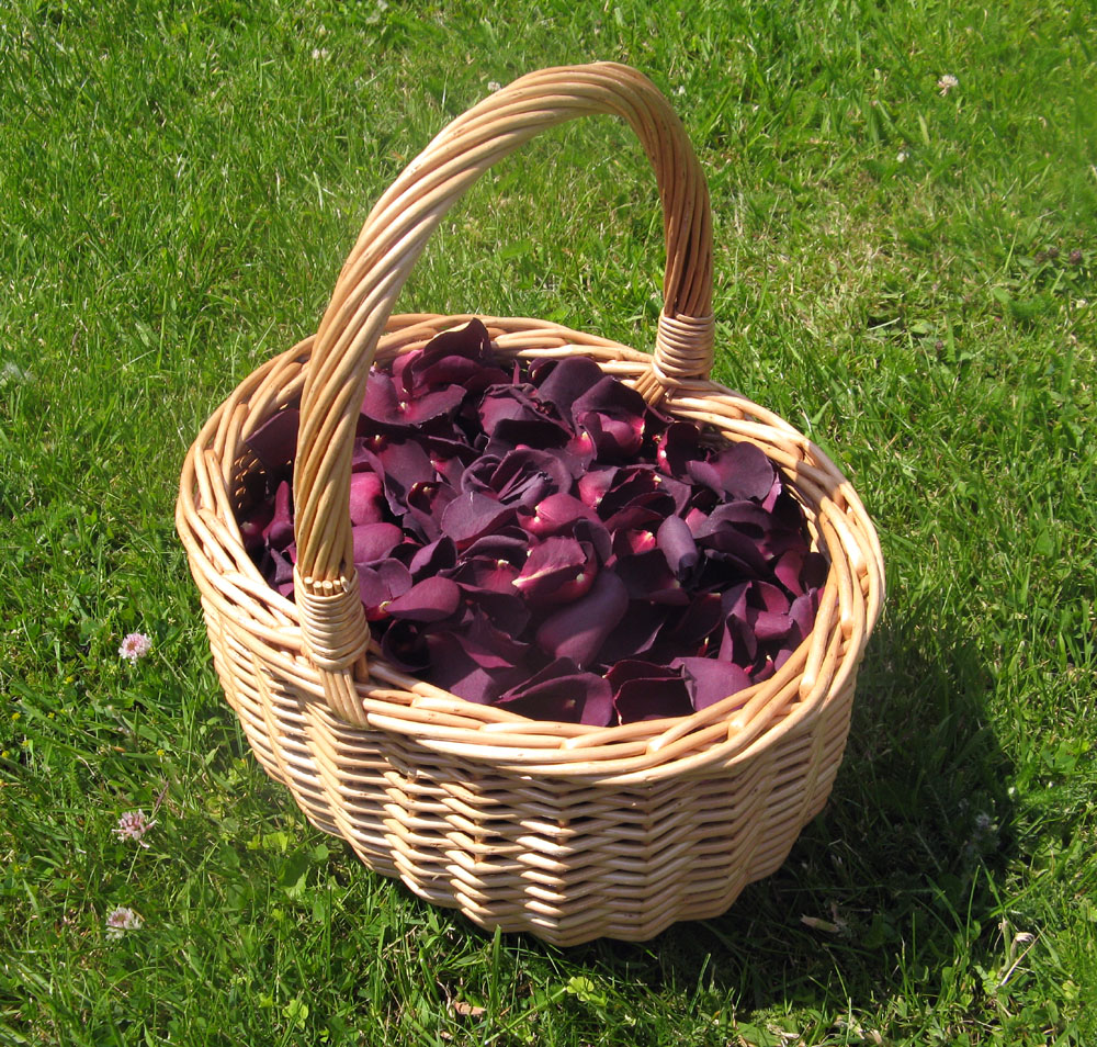 Petal Confetti - Blackcurrant Large Natural Rose Petals