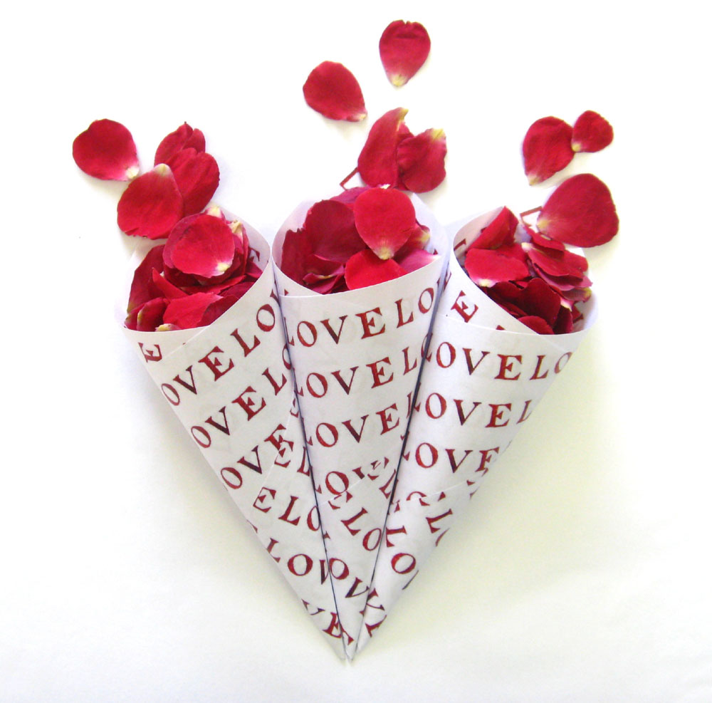 Petal Confetti - Red Small Natural Rose Petals in LOVE Confetti Cones