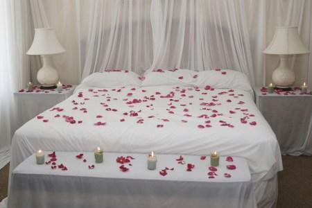 Red Rose Petals - petal scattered bed