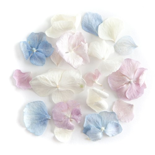 Hydrangea Petals - Lilac, Blue and White