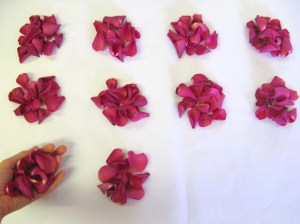 Large Natural Rose Petal - Cerise - what 10 handfuls looks like