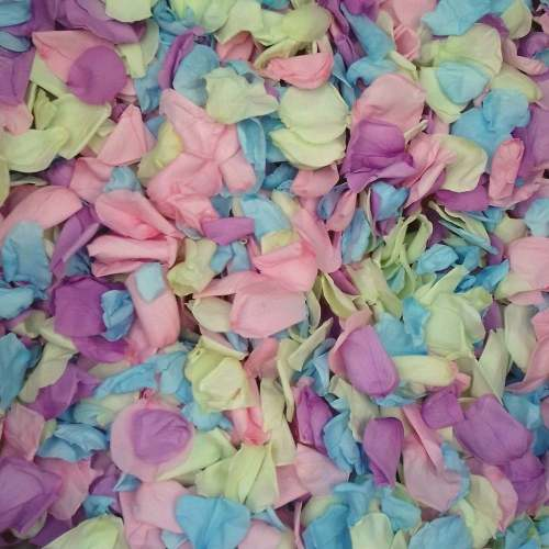 pastel coloured rose confetti