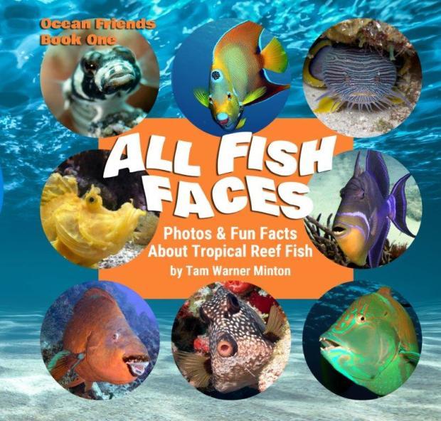 all Fish Faces volunteer tourism