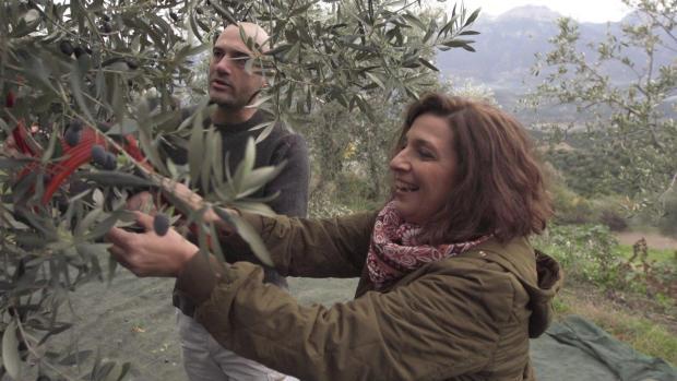greek olives receipe