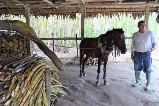 rum distillery inthe amazon rainforest