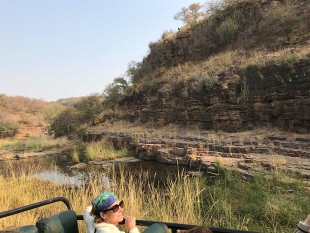 safari at Ranthambore National Park