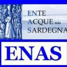 Logo ENAS