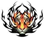 Con gli Occhi della Tigre