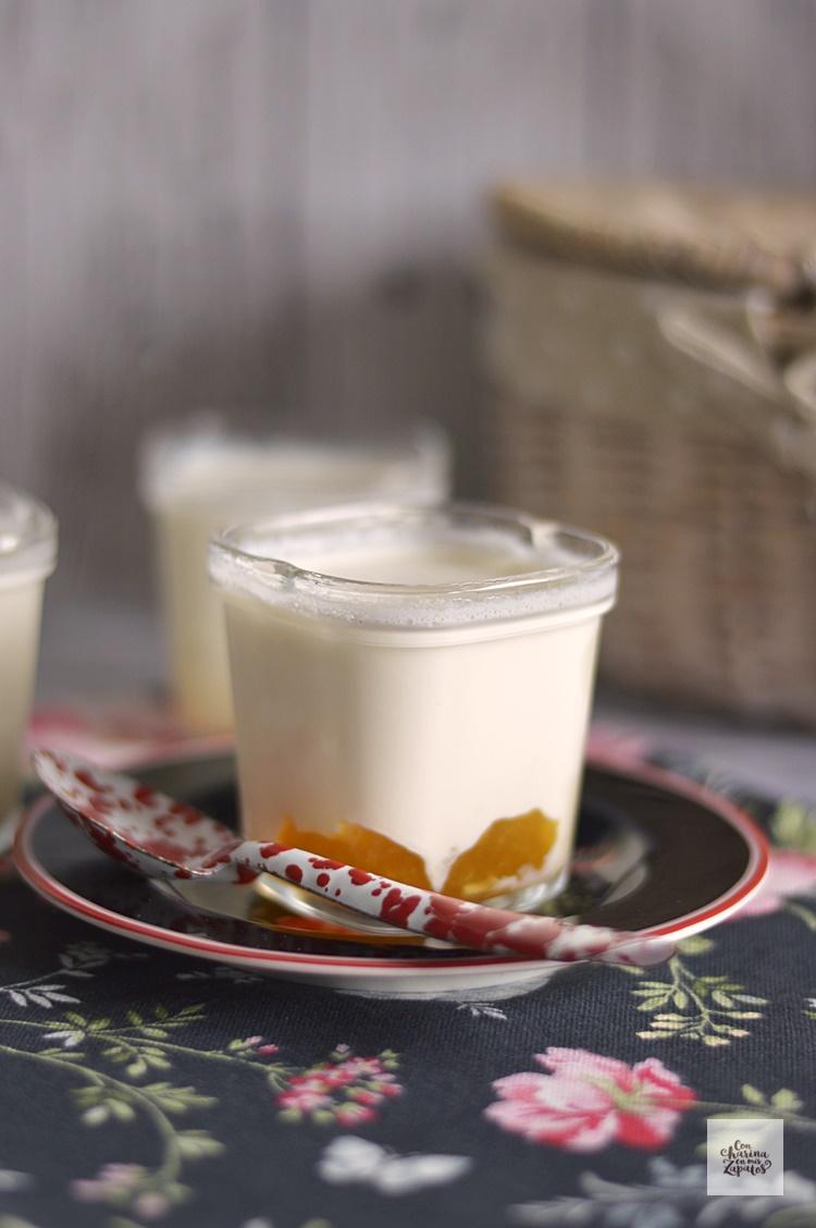 Yogur de Limón y Albaricoque