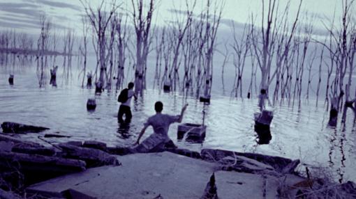 Imagen-15_WS-Swamp1