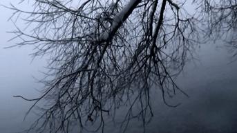 vlcsnap-2014-12-10-13h35m21s227