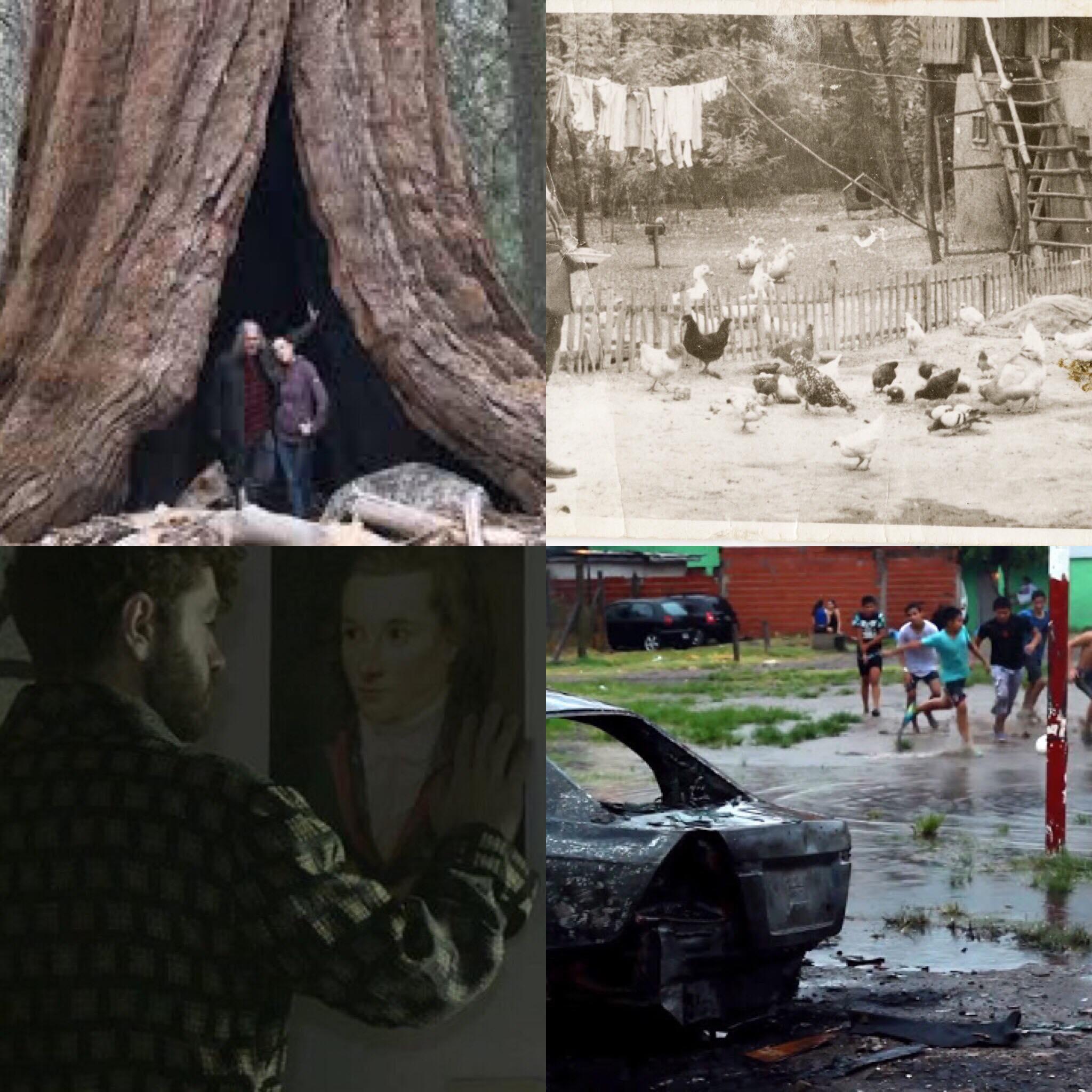 DOC BUENOS AIRES 2019 (02): VARIACIONES DE LO REAL