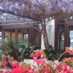 restaurant in marbella, casa de la era