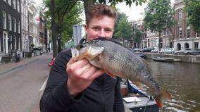 Barsch aus Amsterdam