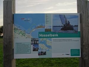 k-Mosselbank