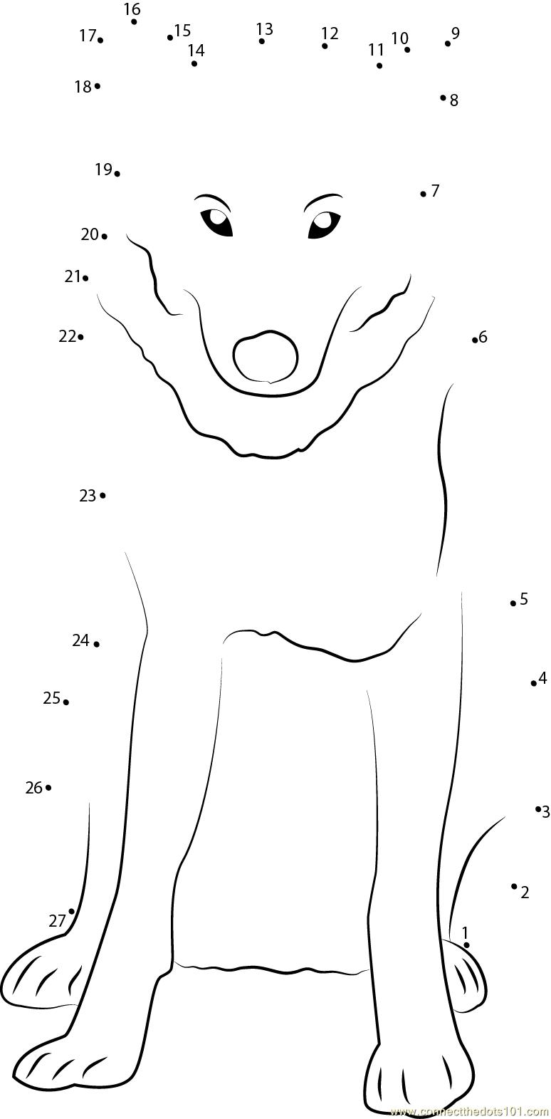 Gray Wolf In Minnesota Dot To Dot Printable Worksheet