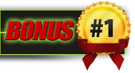 Sign showing # 1 Bonus in Black, Red, and Yellow