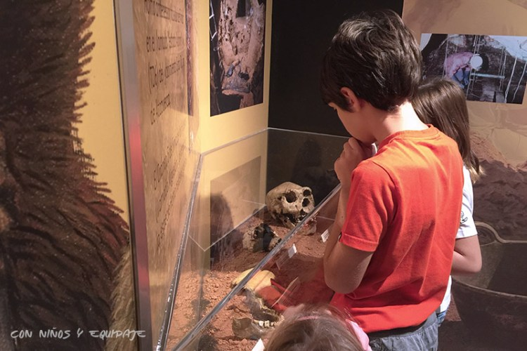 ultimo-minuto-museo-dinopolis