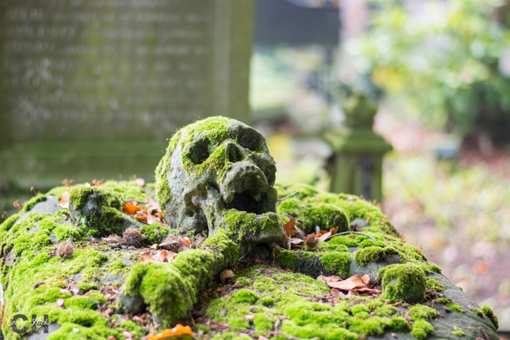 Cross Bones Skull Centrale Begraafplaats Brugge 1024x683 Urbex Gallery