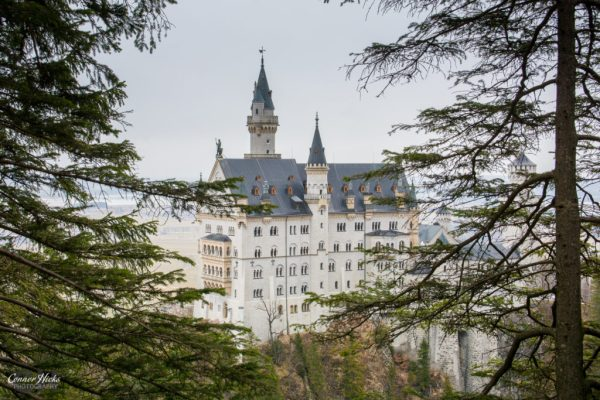 Neuschwanstein Castle Germany 1024x683 Travel