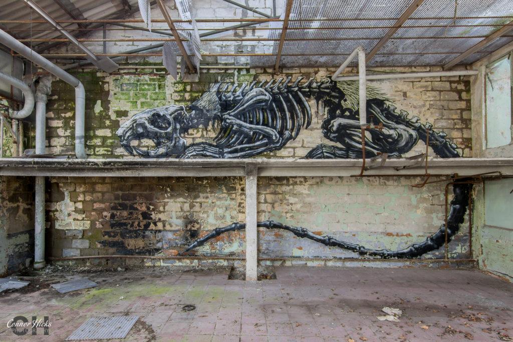 graffiti belgium urbex 1024x683 Skeleton Warehouse, Belgium