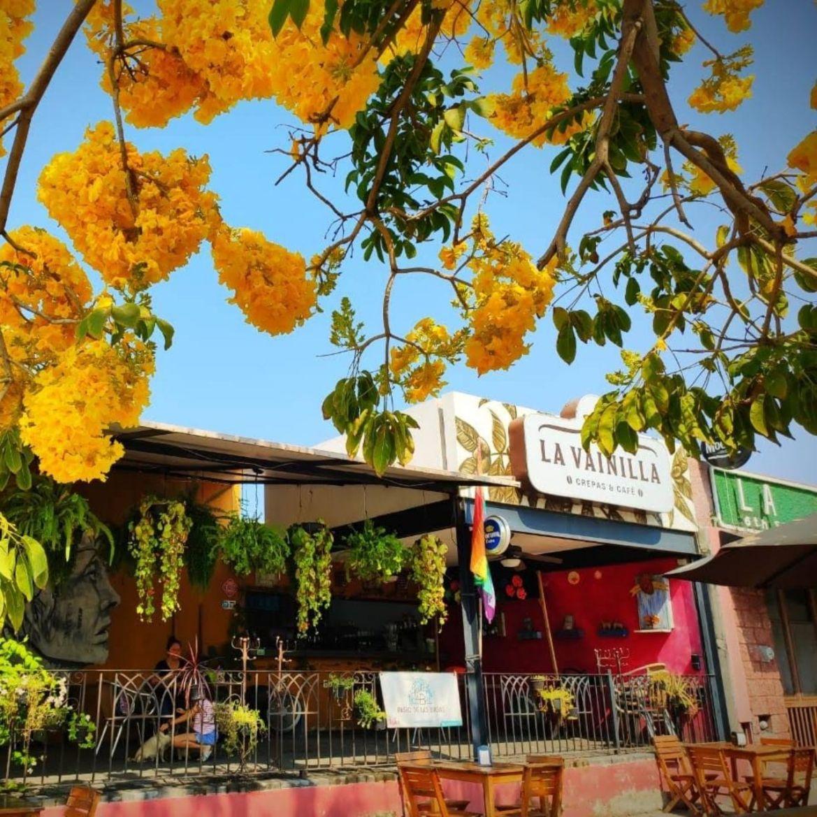 restaurante en Manzanillo la Vainilla