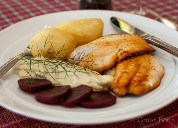 Fennel and garlic purée