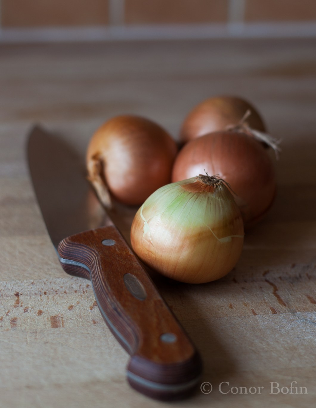 An artistic shot of some onions - Why not?