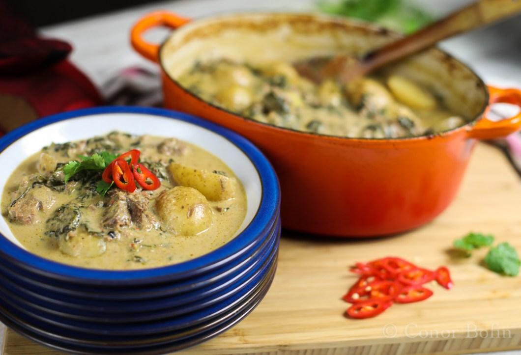 Thai Beef Stew (7 of 9)