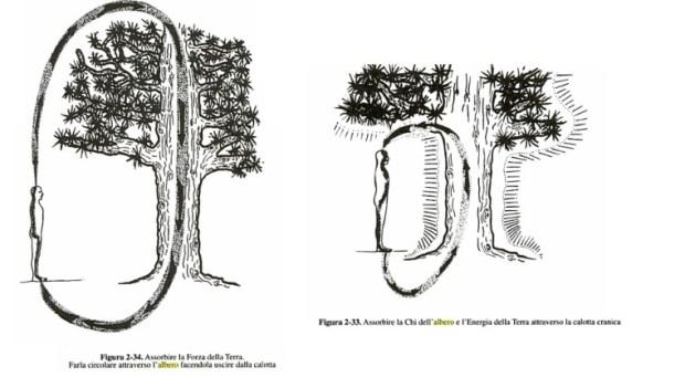 alberi3