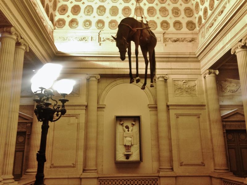 Risultati immagini per mostra di cavalli nei muri