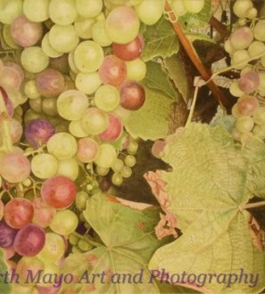 Original coloured pencil drawing 'Grapes on a vine'