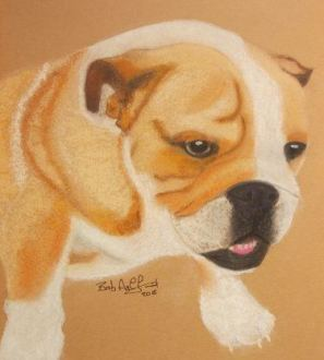 Boxer Dog Pastel Portrait Commission