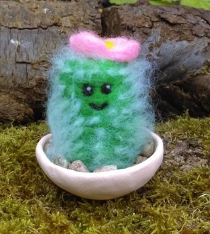 Needlefelt Miniature Flowering Cacti cactus
