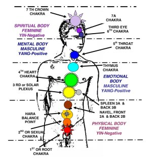 Activate the 7 Chakras With This Powerful Chakra Meditation