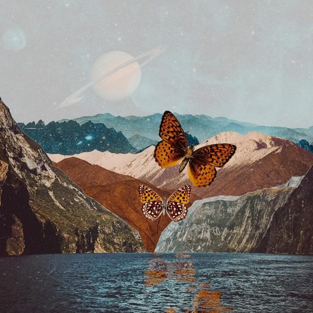 wings-of-hope