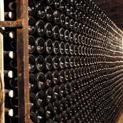 Investir dans le vin solutions pour diversifier vos placements