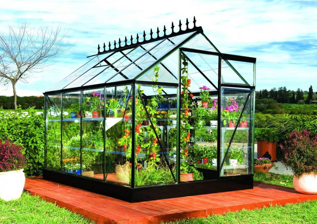 Serres de jardin les conseils jardinage for Conseil de jardinage