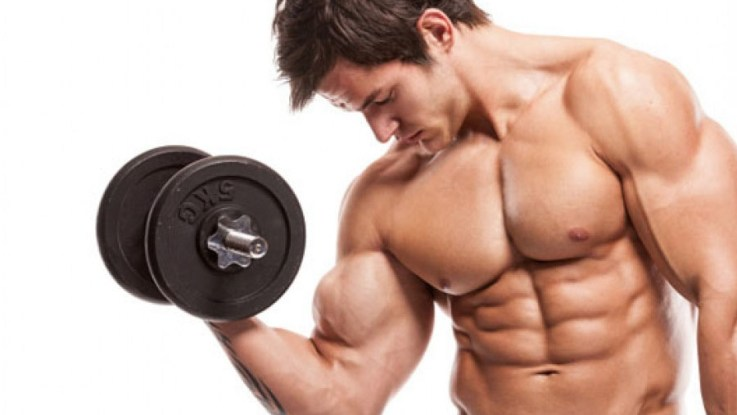 4 exercices musculation biceps