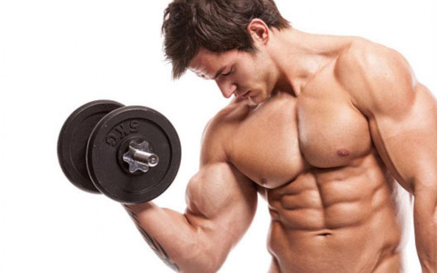 Les 4 programmes de musculation pour biceps