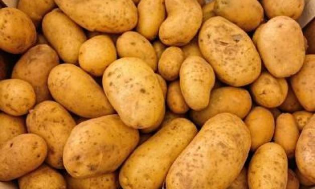 Cuisiner des pommes de terre oubliées