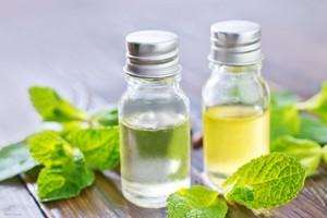 L'huile essentielle de menthe poivrée soulage les céphalées
