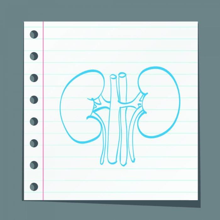 trasplante renal enfermedad renal diabética
