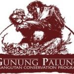 Gunung Palung Orangutan Conservation Program