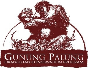 Gunung Palung Orangutan Conservation Program