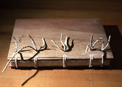 Woodboard60.3.jpg
