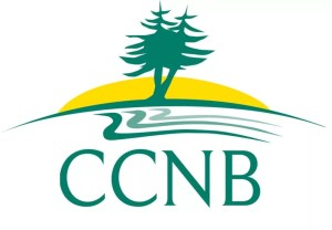 CCNB 2010