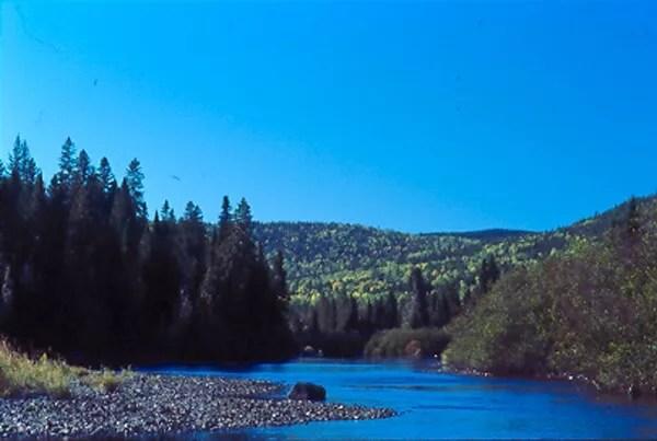 Freshwater_watershed