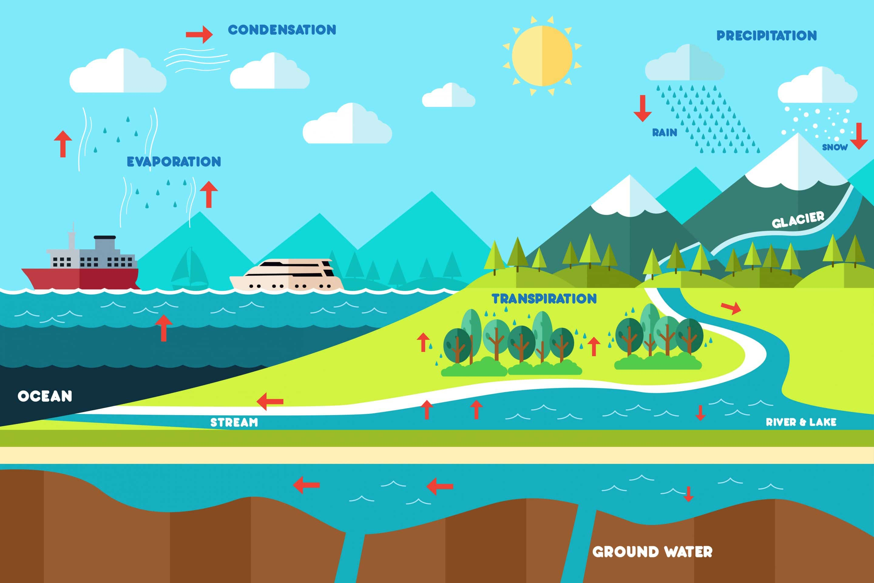 Everything You Need To Know About The Water Cycle And Different Phases